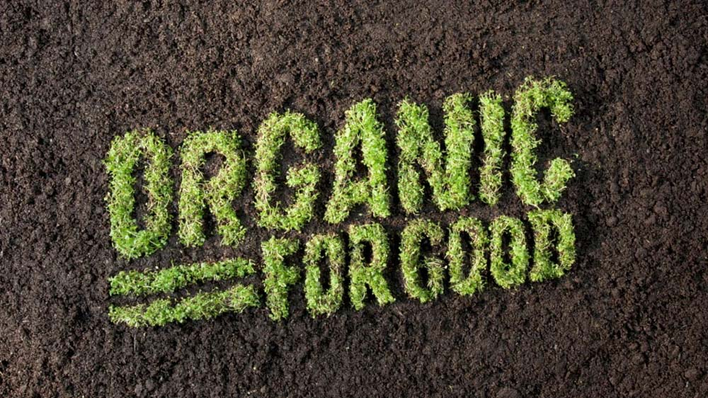 5 Reasons Why People Are Switching to Organic