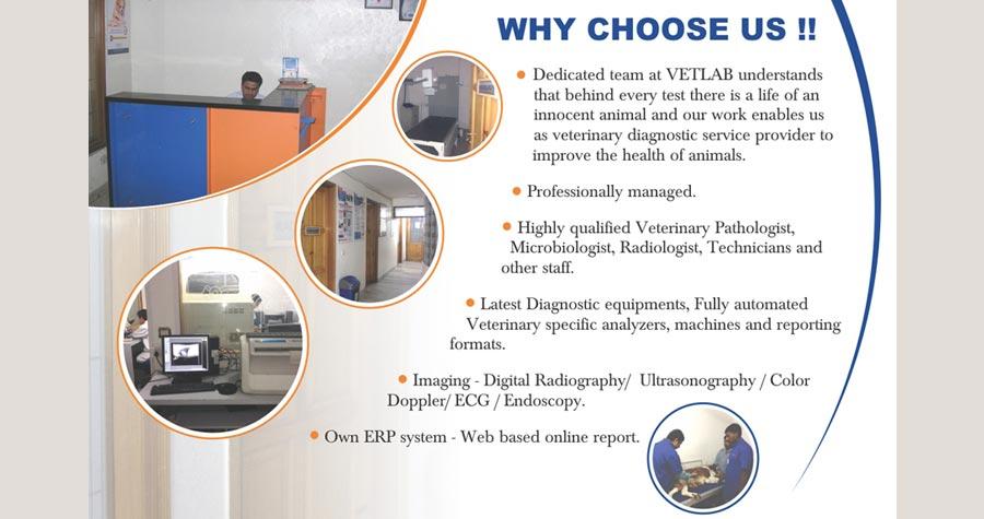 ALL VET DIAGNOSTIC SOLUTIONS PVT LTD