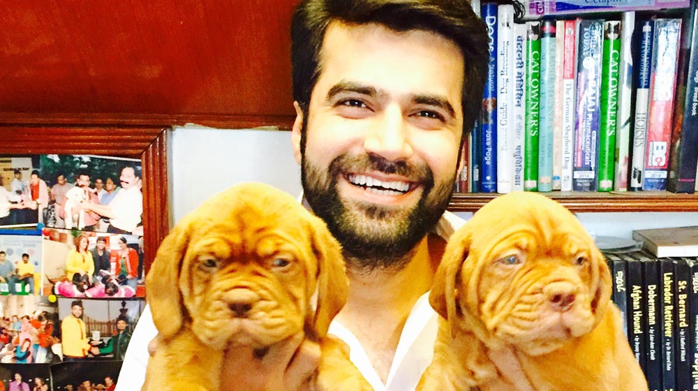 Viren Sharma is Revolutionizing the Pet World With Unique Concepts