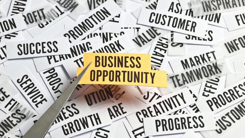 5 Most Profitable Business Opportunities in Gujarat