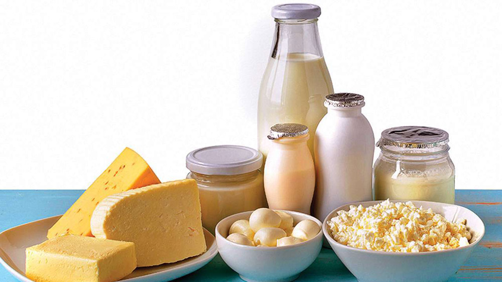 Why Indian Dairy Industry Has a Promising Future In Exports