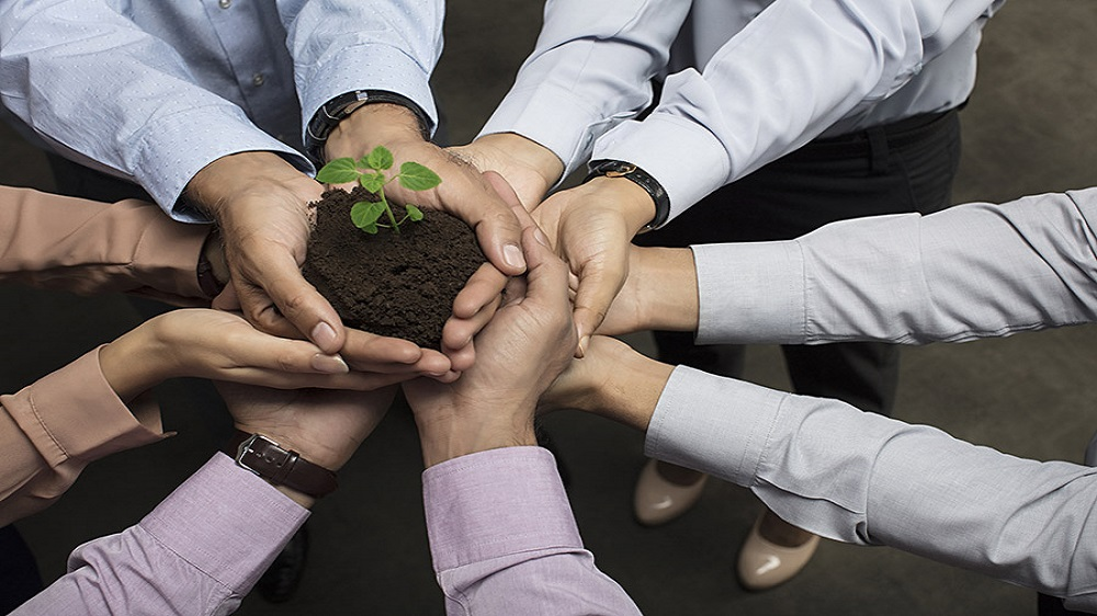 Follow These Tips to Attain Sustainability