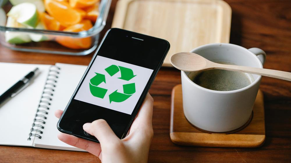 Profitable start-ups for young Ecopreneurs