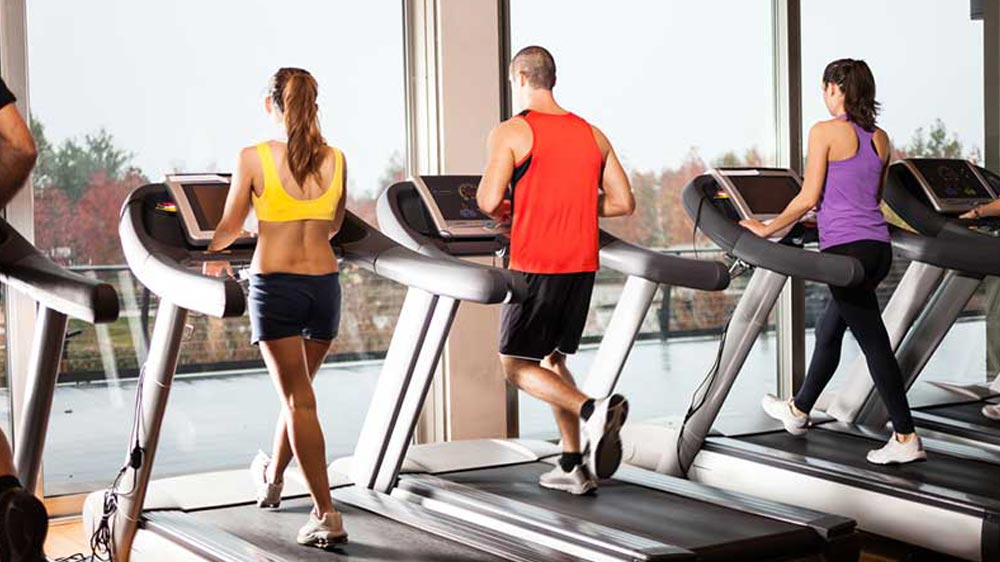 How to Build a Profitable Fitness Business?
