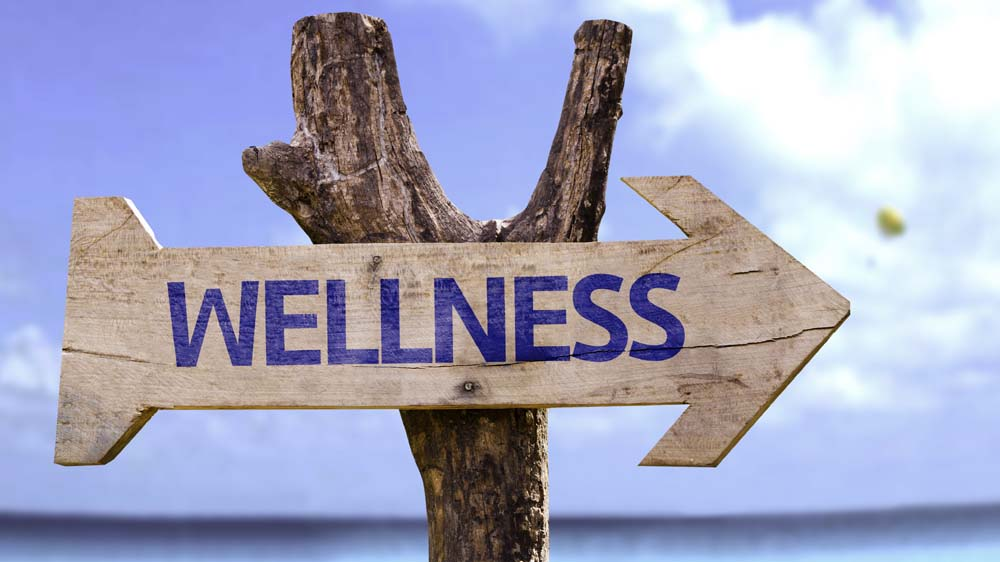 The Evolution of the Wellness Industry- Trends of 2017