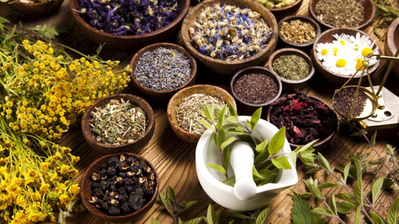 Why Medicinal Herbs Can Be A Lucrative Business Id