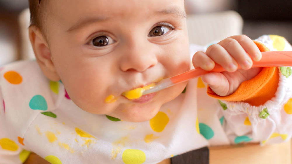 Start An Organic Baby Food Business