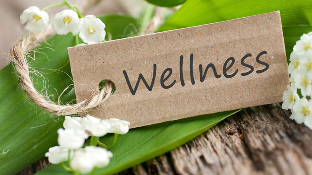 wellness business