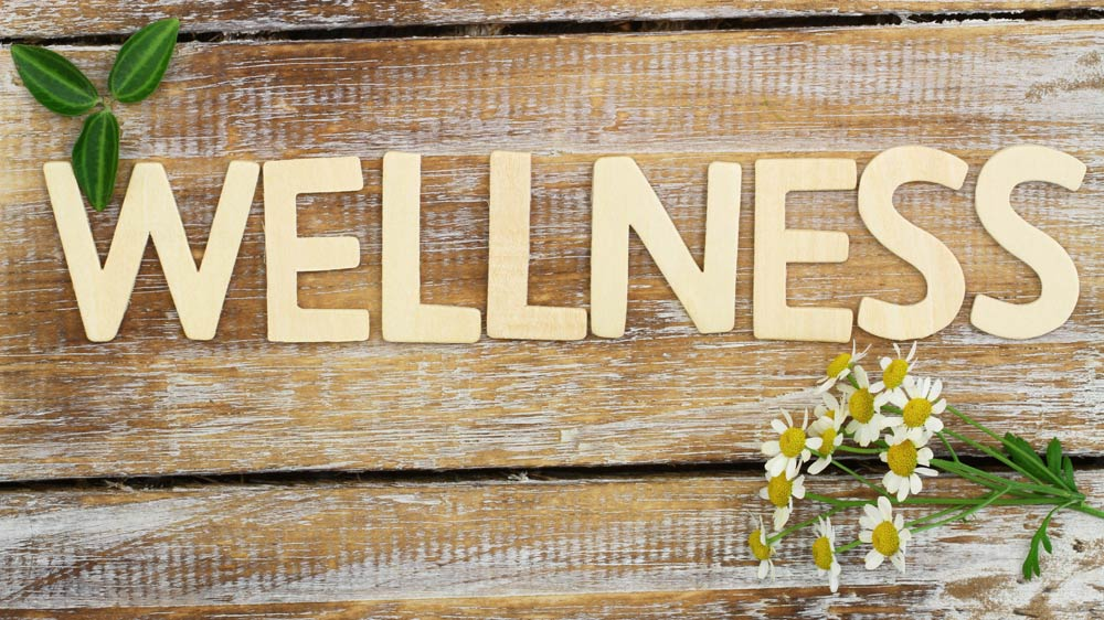 Why Opening A Holistic Wellness Business Could Be
