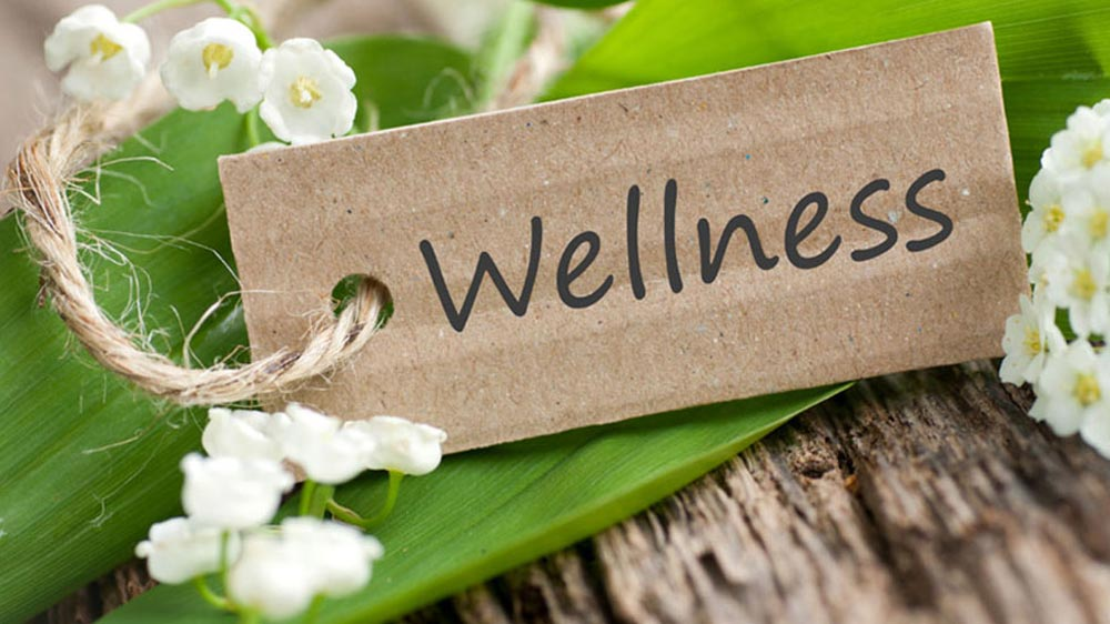 wellness Franchise