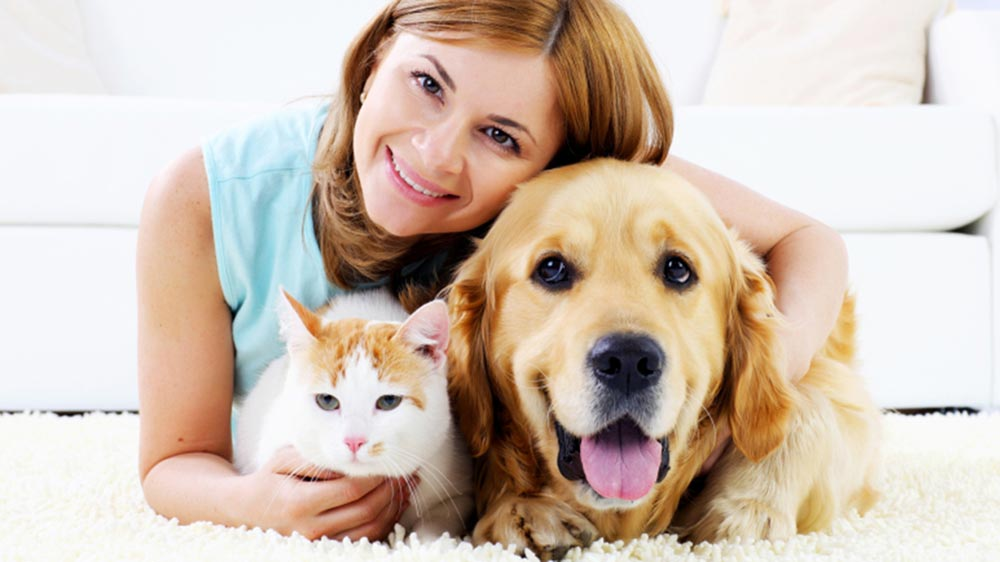 Educating About Pet Care Via Franchising