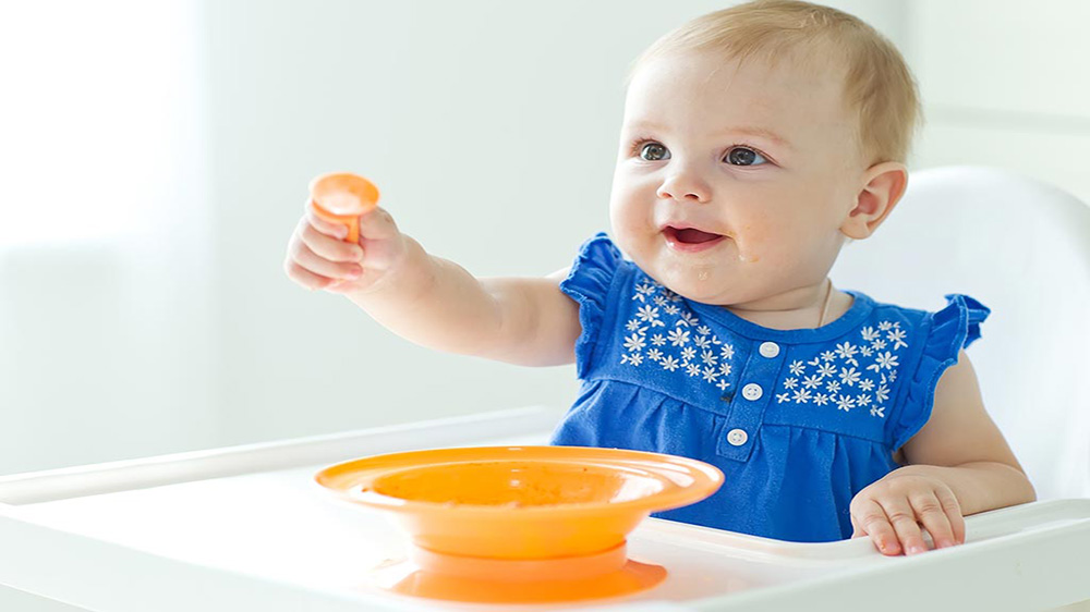 Starting Organic Baby Food Business in India