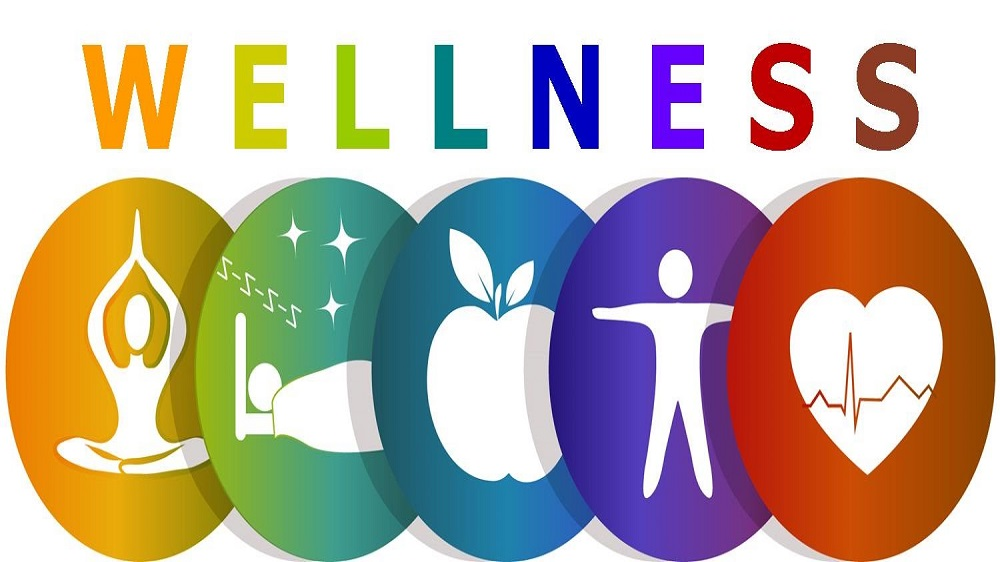 These are the four Wellness Franchise Businesses You Can Kick-Start in Hyderabad