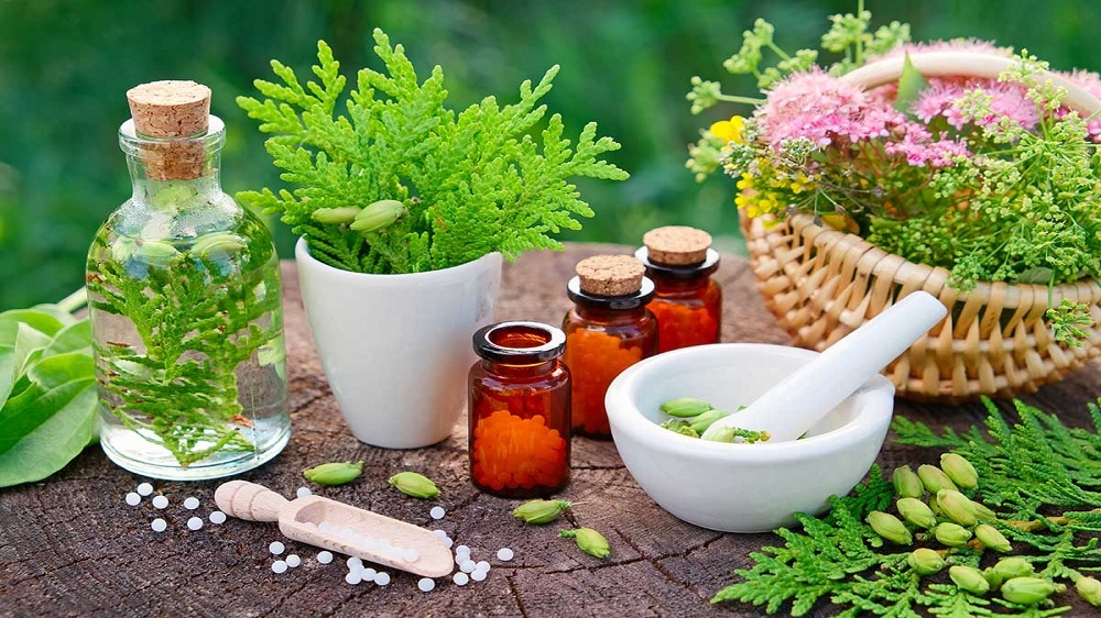 How to Grow Your Naturopathy Practice into a Full-Fledged Business