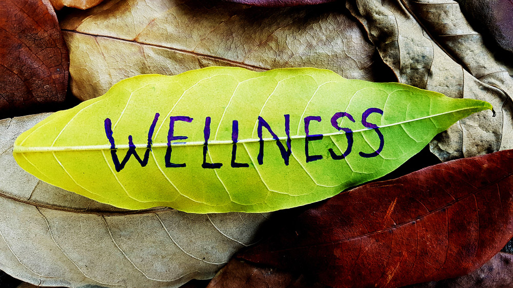 Why Offering Wellness Incentives by Brands could b