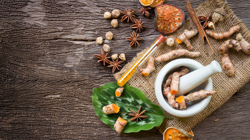 Looking to venture into the Health & Wellness Industry? Consider Ayurveda Franchise Business