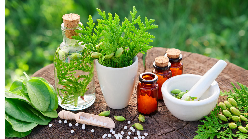 Tradition Medical Related Business like Ayurveda and Homeopathy are the Need of the Hour