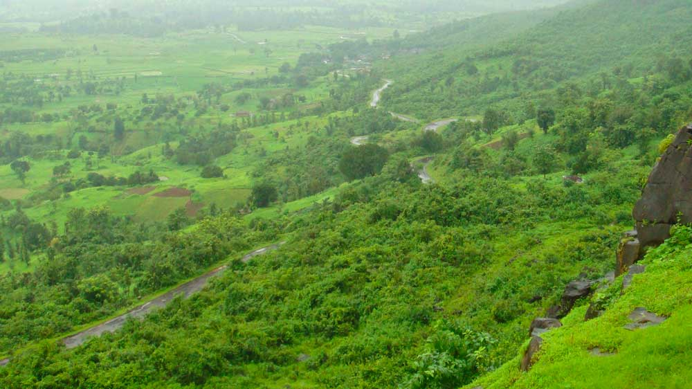Adequate wellness business opportunities are foreseen in Pune city: Market experts