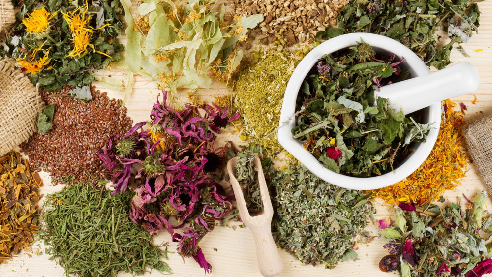What's in Store for the Indian Ayurveda Market