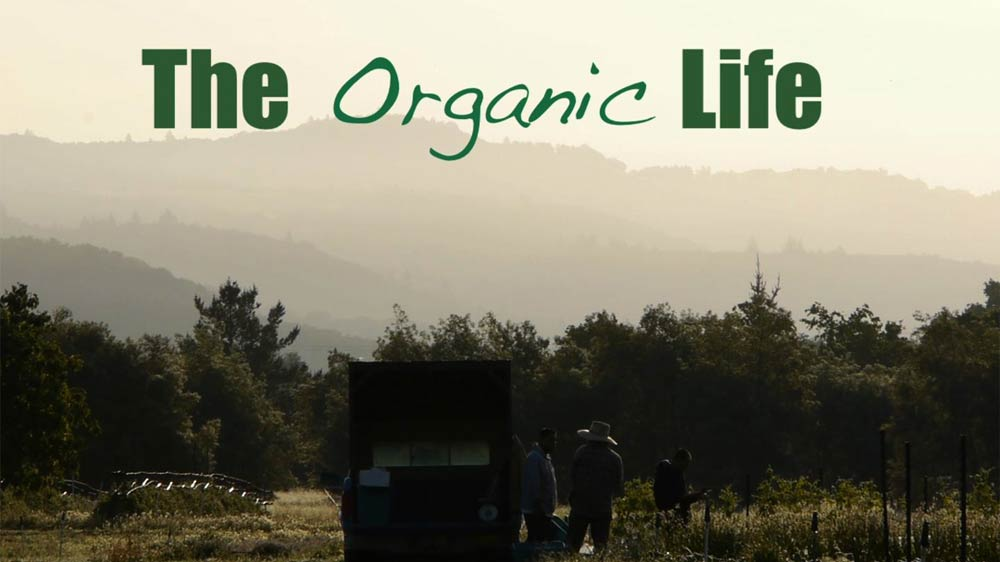Bangaluru-based Purna Organics launches online marketplace for certified organic products