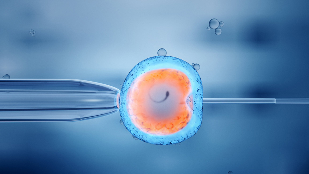 Bringing Hope through the Fertility Treatment Market