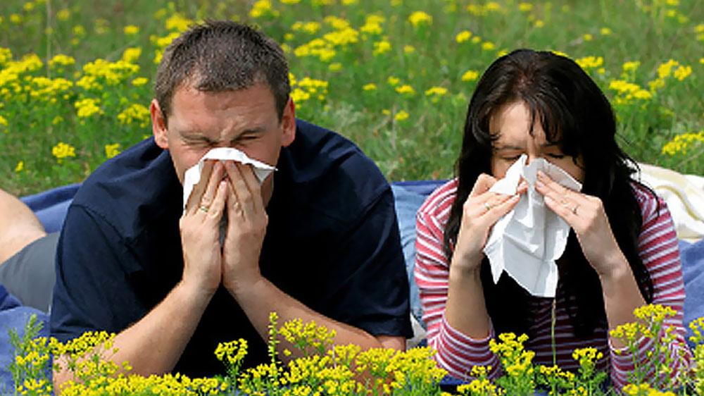 Keep seasonal allergies and hay fever at bay with Ayurveda