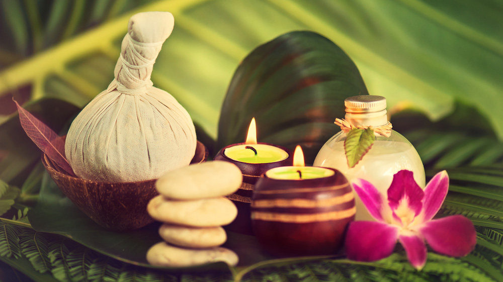 Amalgamating Technology with Ayurveda is the Need of the Hour: Anu Jaiswal