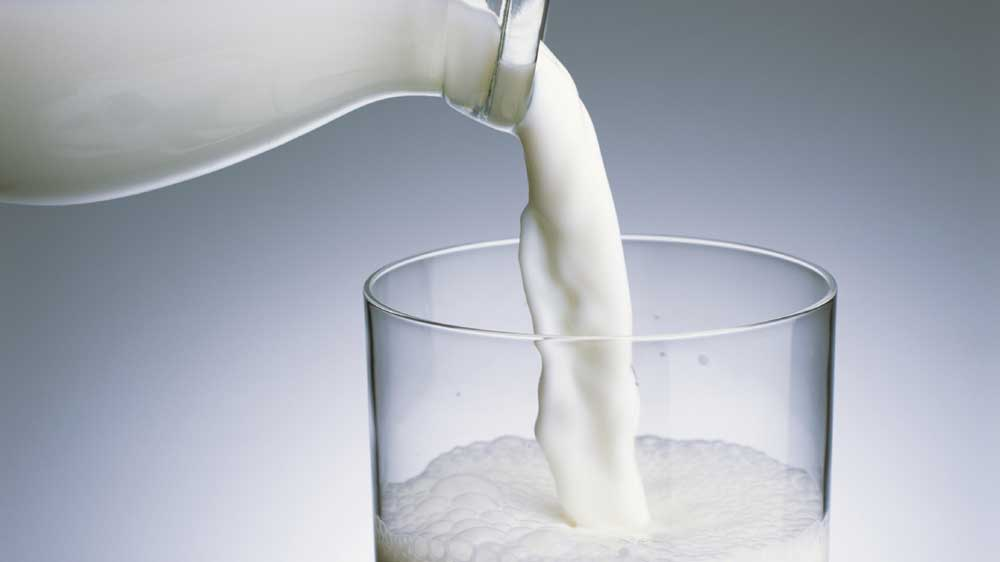 IIT Hyderabad researchers to develop smartphone sensor for detecting milk adulteration