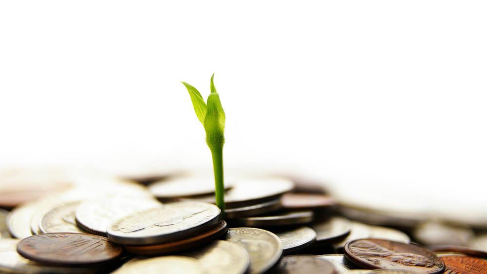 Camlin Fine Sciences bags $30 mn IFC Fund