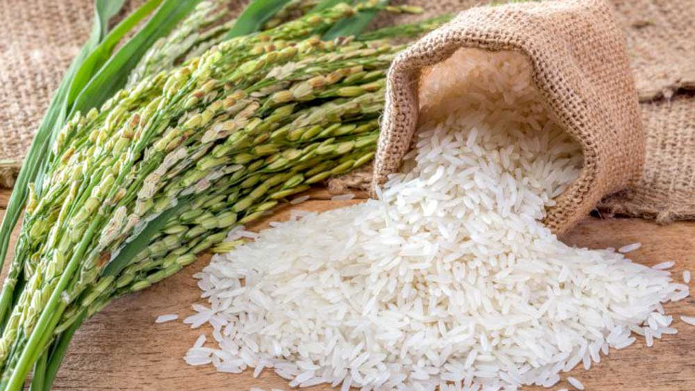 ITC to enter packaged rice segment
