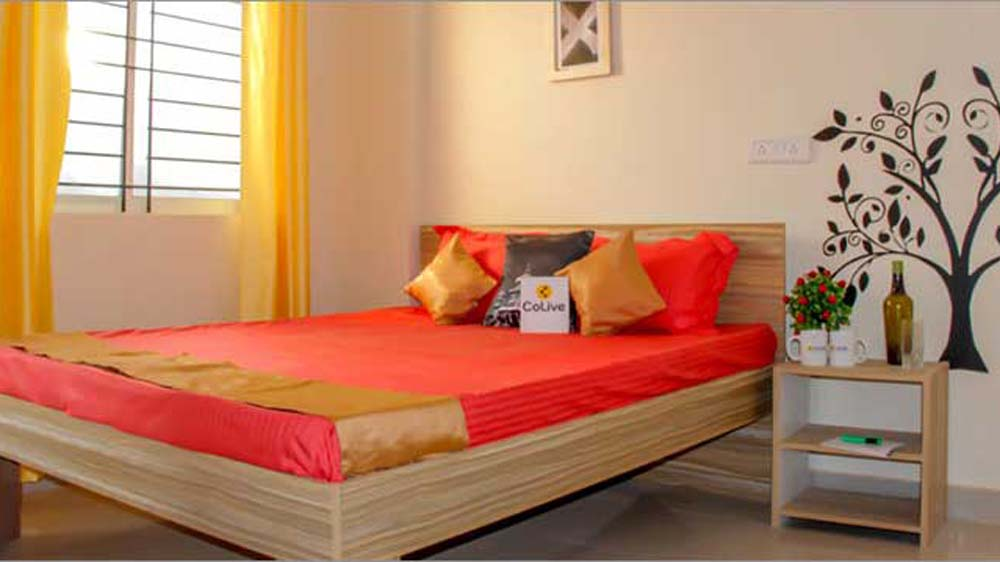 With new property in Bangalore, Colive strengthens position in the luxury co-living segment