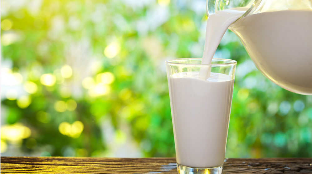 Milk Mantra Dairy raises USD 10 million in a fresh round of funding