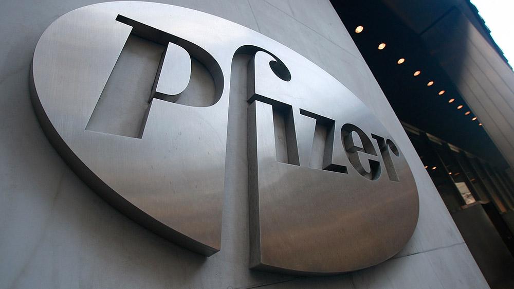 Pfizer Net Profit Rises To 40%