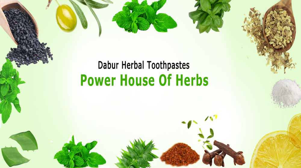 Herbal revolution benefits home-grown toothpaste companies
