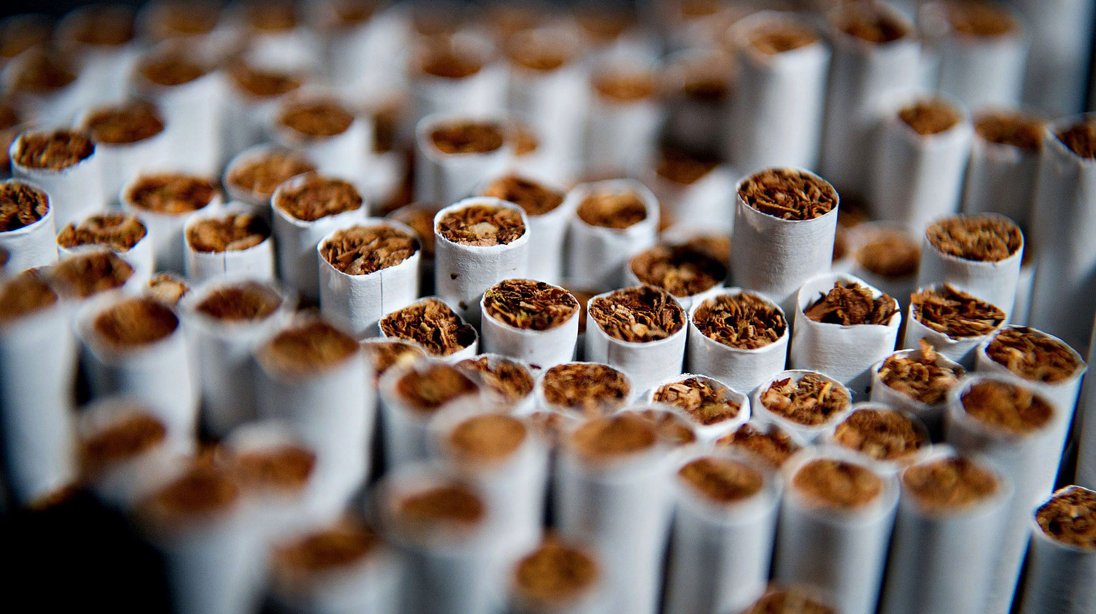 PIL gets filed against govt's involvement in tobacco industry